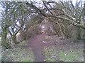 SO9788 : Portway Hill by Burgess Von Thunen