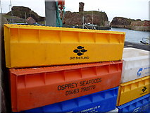 NT6779 : Fishboxes at Dunbar - Saturday 5th February 2011 : Orange Osprey by Richard West