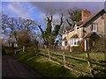 SU7532 : Burhunt Cottages near Selborne by Shazz