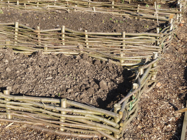 Raised Beds, Attingham Walled Garden