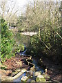 TQ4164 : Stream between the central and northernmost ponds at Keston by Mike Quinn