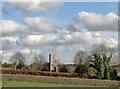 TG0436 : Thornage church as seen from the footpath by Adrian S Pye