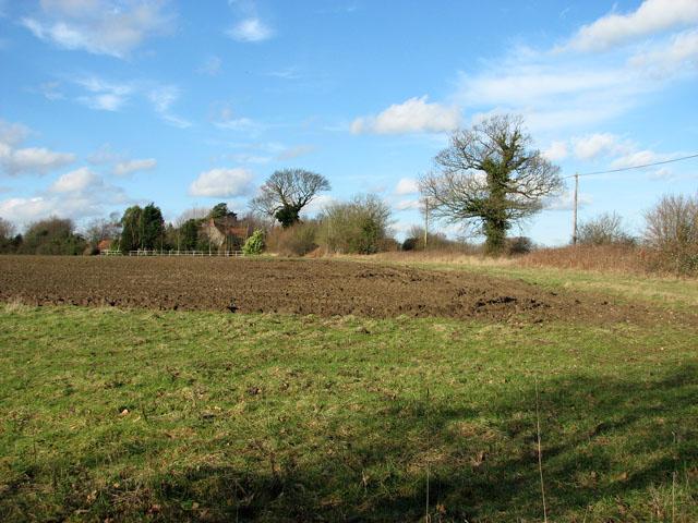 View along a field's edge south of Sharrington