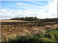 TG0336 : Farmland south of the village of Sharrington by Evelyn Simak