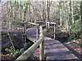TQ4164 : Duckboards over the River Ravensbourne in Padmall Wood by Mike Quinn