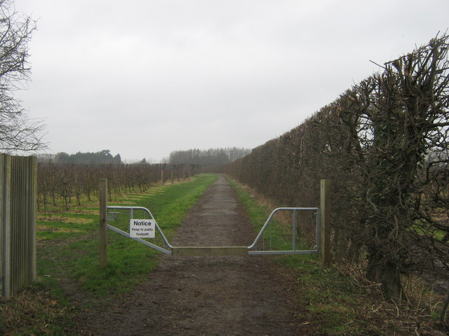 Bridleway to the A258 Deal Road