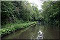 SP0578 : Canal near King's Norton, Birmingham by Roger  Kidd