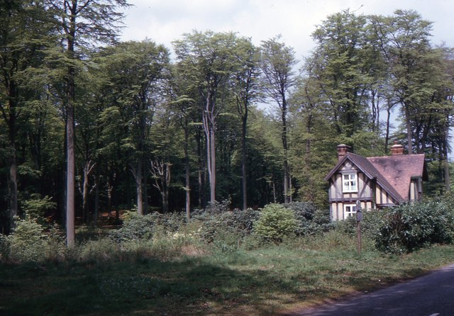 Toys Hill 1966 C Sally Geograph Britain And Ireland