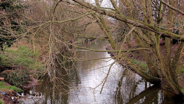 The Knock River, Belfast (10)
