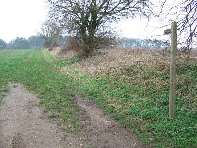 Public footpath near East Rudham, Norfolk