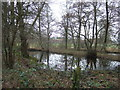 TF8528 : Pond at Broomsthorpe in Norfolk by Richard Humphrey