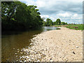 NY7613 : River Eden below Musgrave Bridge by Roger Lombard