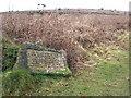 SW5931 : Commemorative stone on Godolphin Hill by Rod Allday