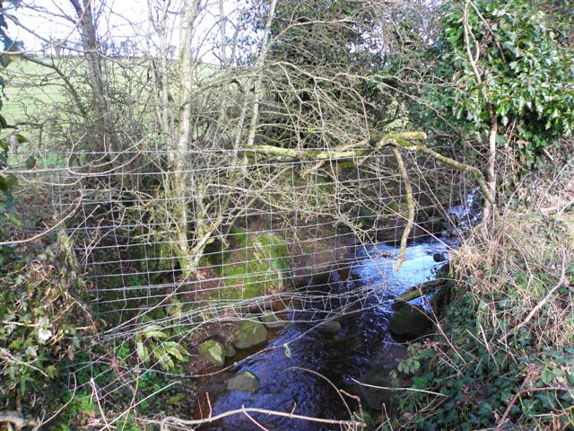 Holy well, Gort