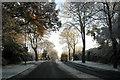 SZ0596 : Winter Gritting by Peter Kazmierczak