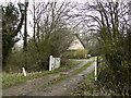 TM3668 : Thatched house in the trees near Peasenhall by Adrian S Pye