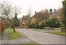 SU6350 : Neville Close, Basingstoke by Derek Harper