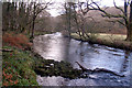 SS9029 : The River Barle below New Invention by Thor Beverley