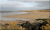 NT4884 : The beach at West Links by Walter Baxter