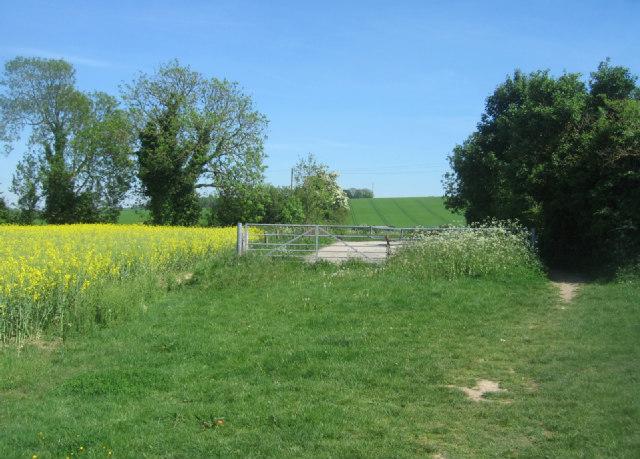 Hampshire countryside - Cliddesden