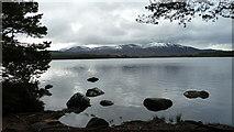NH9718 : Loch Garten by Peter Bond