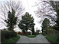 TM3563 : Junction of Glemham Road with Calveras Grove on the right by Adrian S Pye