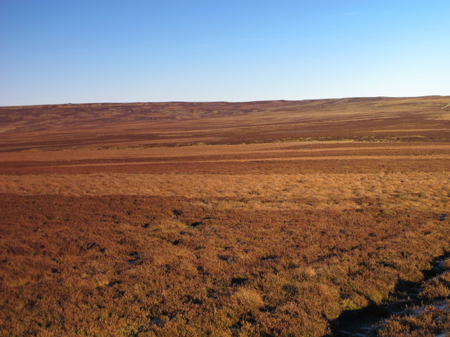 Panorama from Hog Hill (11: ENE - Low Bradshaw Hill)
