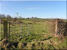 H6156 : Tullybryan Townland by Kenneth  Allen