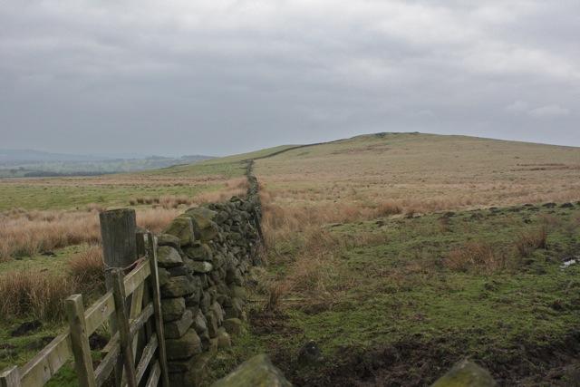 Drystone Wall to Reva Hill