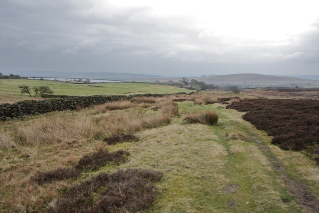 The Edge of the Moor