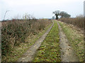 TG1403 : Farm track to the old A11 road through Hethersett by Evelyn Simak
