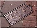 J3373 : Glenfield & Kennedy fire-hydrant cover, Belfast (2) by Albert Bridge