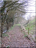 TM3763 : Footpath to Thurlow Close by Adrian Cable