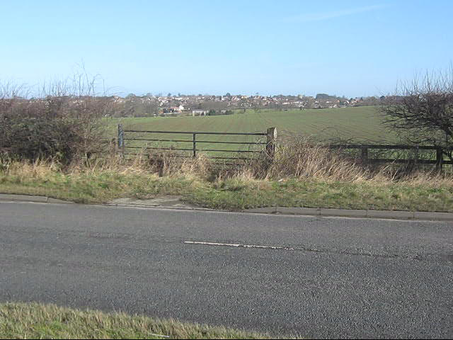 Field gate off the A68 with Heighinghton in the background
