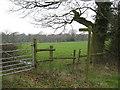 SP0677 : Footpath to Dark Lane by Michael Westley