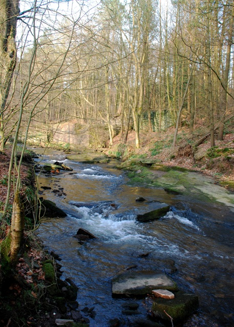 Clough Brook