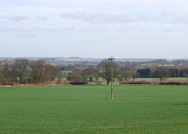 Farmland near Walton Hurst