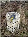 NR3564 : Milestone near Eorrabus, Islay by Becky Williamson