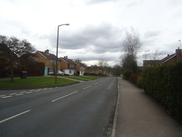 Grattons Drive, Pound Hill by Stacey Harris