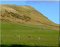 NS2472 : Dunrod Hill by Thomas Nugent