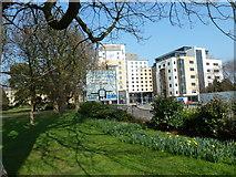 SU4212 : Southampton's splendid parks (69) by Basher Eyre