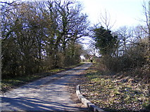 TM4072 : South Manor Lane, Bramfield by Adrian Cable