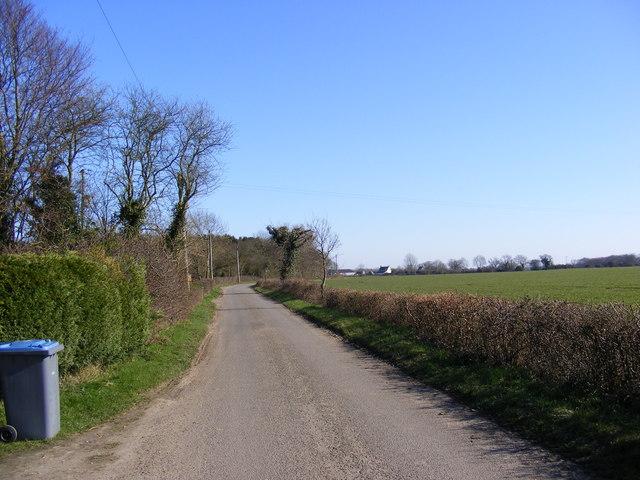 Willow Marsh Lane