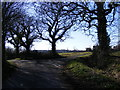TM3869 : Strickland Manor Hill road junction by Adrian Cable