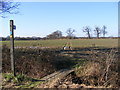 TM3869 : Footpath to Park Cottage & A1120 Yoxford Road by Adrian Cable