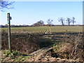 TM3869 : Footpath to the A1120 Yoxford Road by Geographer