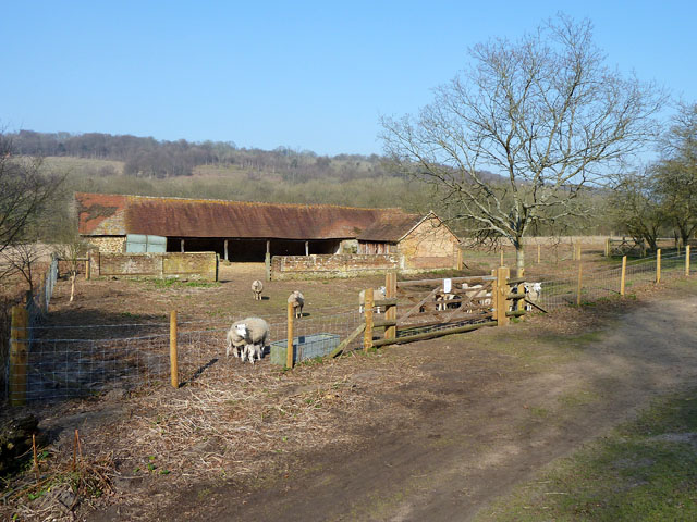 Leasers Barn and sheep