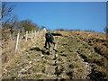 SE8453 : Climbing up Sylvan Dale the hard way by Ian S