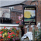 SO8171 : The Rising Sun pub sign at Stourport, Worcestershire by Roger  Kidd