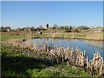 TM4160 : Friston church across the pond by Adrian S Pye